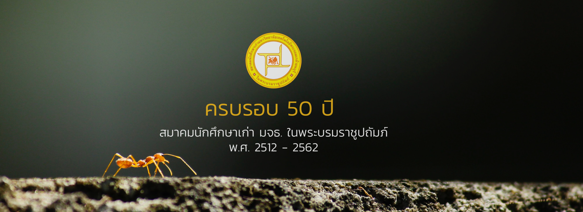 แบนเนอร์ สมาคม 50 ปี
